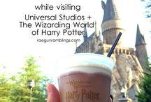 Universal studios holiday 17'