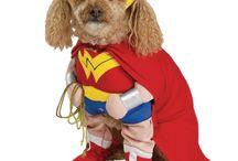 Super Hero Pets