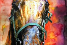 Horses / Captured power and grace