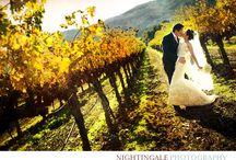 V. SATTUI / Beautiful V. Sattui Napa Valley Wedding by Nightingale Photography www.nightingalephotos.com