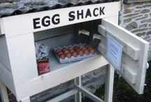 honesty box for our highland cattle tips or egg sales