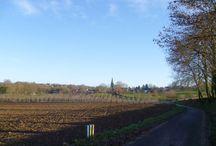 Wandelen in Zuid-Limburg / Hou je van wandelen in een mooie natuur met wat uitdagingen in de vorm van lekkere hellingen, ga dan eens een paar dagen naar Zuid-Limburg om je uit te leven en daarna lekker culinair te verwennen.