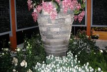 Gardens & Flowers at Canada Blooms Throughout the Years