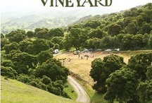 Wines, Vines, Vineyards / by Alex Guarnaschelli