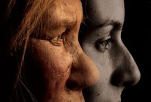 Neanderthal. / Neanderthal fossils, life reconstructions, technology and art.