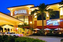 We LOVE the Galleria Mall! / Fill your day with Shopping, Dining and Entertainment - It's all at the Galleria!  www.galleriamall-fl.com