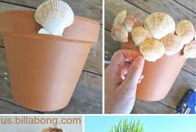 Ideas with shells