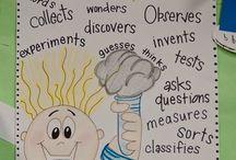 Science / Earth Science Grade 6