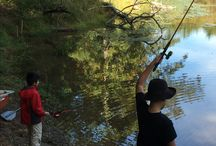 Montfair Fishing / All ages enjoy fishing in Montfair's small mountain lake and ponds!