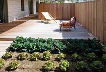 Jardín, frutas y verduras