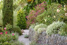 pinterest gardening