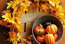 Fall / by Diana Cunningham