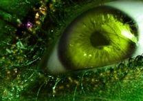 Ojos en verde!!!