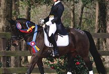 2014 Equestrian Catalog Cover Contest / Chance to win $2500 by submitting a photograph with a Hodges Badge Company award in it (Rules apply - http://cdn.yourzoom.com/hb/pdf/2015catalogcontest.pdf)