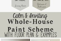 Paint colour schemes