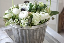 Zinc Containers...love.