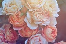flower^^