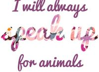 animal passion quotes