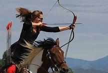Mounted Archery?