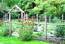 Gardening / Beautiful flowers, clever fences, and practical plantings