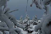 Wintery Days~In Many Ways / wintery places