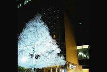 赤プリ跡地のビル、初めて来ました。クリスタルで出来たツリーがきれい。 a Christmas tree #christmastree #illustration #tokyo #akasaka #cristaltree #クリスマスツリー #クリスタルツリー #赤プリ跡地 #東京ガーデンテラス紀尾井町 #っていうらしいよ写真