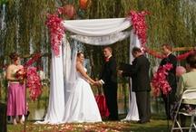 Wedding Bells / by Ally Hetto