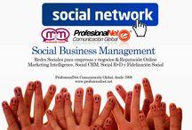 Servicios de Diseño y programación Web / Servicios de Diseño y programación Web www.profesionalnet.net