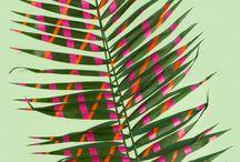 Pomalowane rośliny