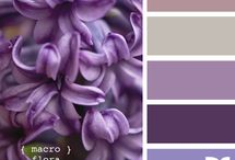 Purple <3 / by jen trogs