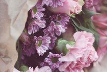 Такие разные и такие классные цветочки