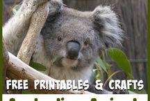 Aussies bush