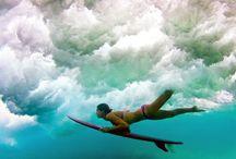 - Surf / Skate / Longboard -