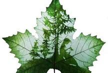 ART - Leaf Carving