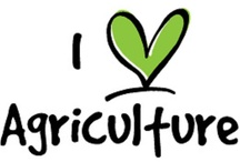 Agriculture / by Illinois Farm Bureau Youth Ed