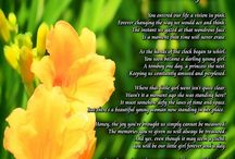 Daughters and Sons Gifts / These beautiful poem gifts speak lovingly of the relationships between parents and their sons and daughters.  Each would make wonderful gifts for a birthday, Christmas or... just because. / by PoetryPrints.com