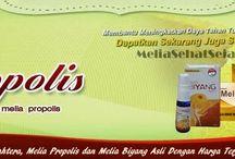 Melia Sehat Sejahtera / Era Baru PT Melia Sehat Sejahtera - Distributor Resmi Jual Melia Propolis Asli dan Jual Melia Biyang Asli 100%