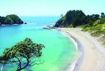 NZ / Home