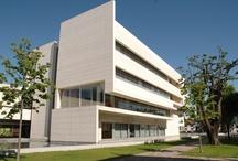 Biblioteca Municipal Florbela Espanca | Public Library