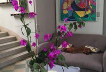 lo nuevo en Berkana / vintage, arquitectura de interiores y diseño, restauración de muebles