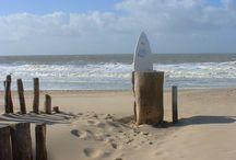 Omgeving / Sfeer Noordzee, Hotel & Spa / Omgeving en sfeer van Noordzee, Hotel & Spa
