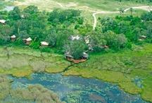TRUE 5 STARS Safari Lodges / The top Safari Lodges in the World. As featured on www.true5stars.com