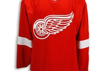 Detroit Red Wings / Here are some gifts I wish I could give to my husband. He's a  Detroit Red Wings fan. / by janettwokay