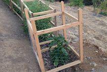 Tunel na warzywa