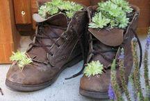 shoe reused