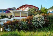 Hotel Villa Fontana ** - Canj - Montenegro / 2016. july 3 - july 11