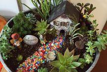 Fairy gardens & Terrarium