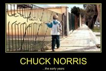 Chuck Norris Jokes :) / by Hoda Parvinchi