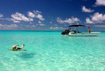 Future vacations