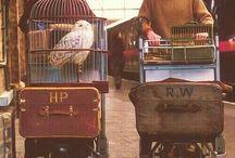 △⃒⃘⚯͛  Harry Potter △⃒⃘⚯͛